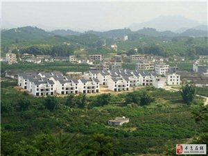 吉潭圳下一景