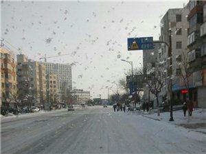 昨晚的雪好大啊