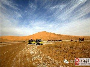 站在世界最高沙山?