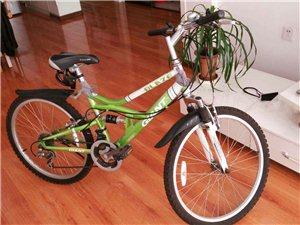 捷安特自型车24型