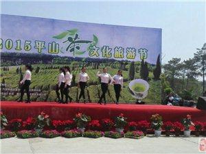 2015南京平山茶文化旅游节