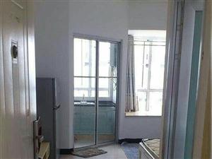 水晶城精装单身公寓个人出租