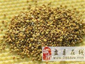 出售蜂蜜,花粉,蜂皇浆,蜂胶,有需要联系