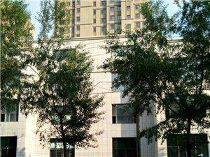 文化广场西附近有一门市出租,130平,两万八/年