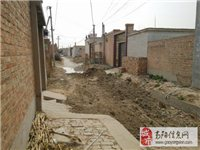 高陽縣後柳灘(tan)村街道(dao)亂(luan)墊導致交通和水(shui)流不出(chu)去(qu),村委會不管去(qu)