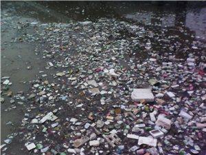 一场春雨,湫河成垃圾河!