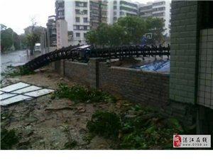 台风来了,十中毁了