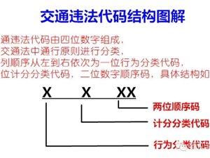 【微讲堂】交通违法代码背后,隐藏了哪些含义?