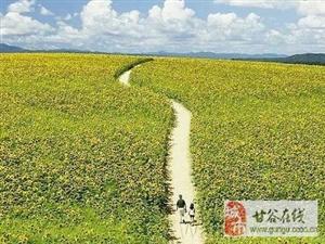 人生的旅程――作者刘学民