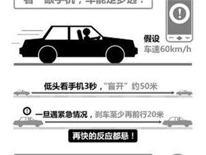 司机开车低头找手机