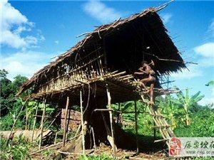 探秘世界上最后一个食人族部落