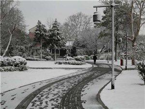 雪后魅力六合