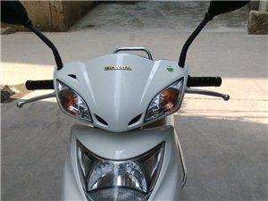出售11年11月新优悦110(白色)6000元