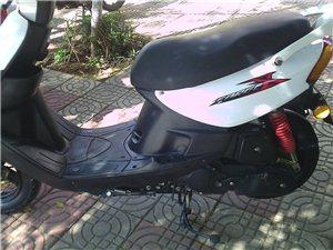 手续全齐摩托车出售