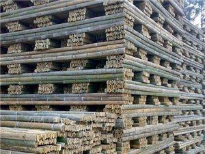 大量竹跳板销售