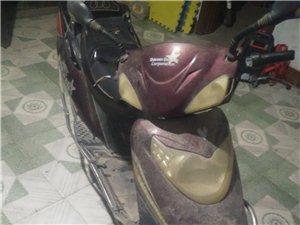 二手电动摩托车