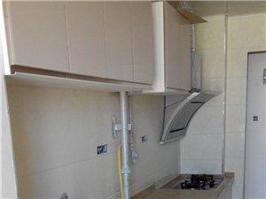 德意廚房電器  廚柜
