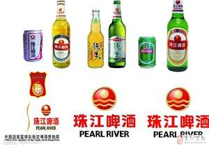 珠江啤酒招洛阳地区代理商