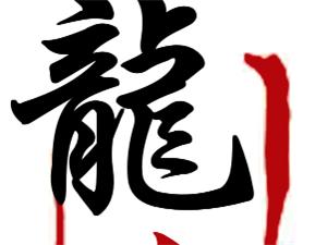 涞水龍仁跆拳道馆