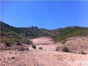 120亩左右的山林跟土地出售