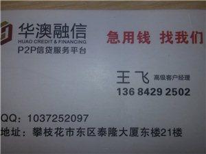金融信息服务