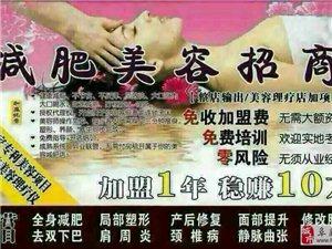 中医经络减肥美容理疗诚招代理