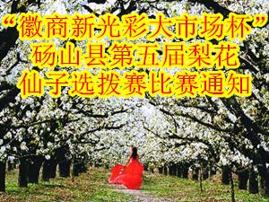 """2014年""""徽商新光彩大市场杯""""砀山县第五届梨花仙子选拨赛比"""
