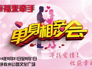 """2014湘� 地�^""""幸福��渴帧贝笮拖嘤H交友��火��竺�中"""