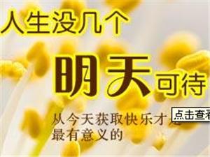桂林之家免费商家入驻群开通