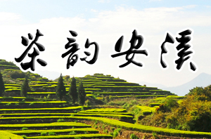 【茶韵安溪】山水茶都、大美安溪