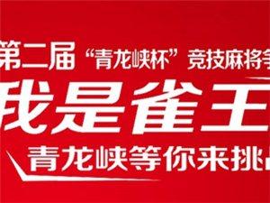 """宜昌市第二届""""青龙峡""""杯竞技麻将争霸赛"""