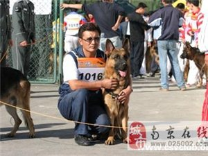 凯旋国际爱犬学校欢迎您