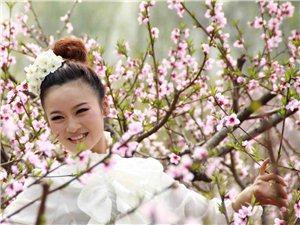 [经典回顾]2011年的桃花仙子(八路拍摄)
