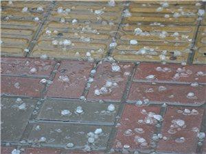 博罗县城下一元硬币大小的冰雹,如下雪