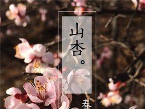 满园春色关不住。愿春色常驻你梦中。