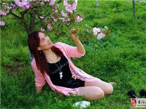 樱花人笑春光美