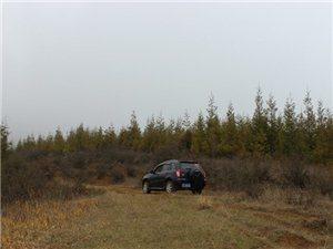 开着我的爱车挑战崎岖山路,表示毫无压力