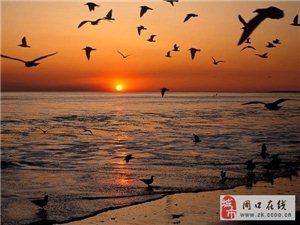 周口到山东日照海滨自驾游线路,日照海边吃住玩攻略
