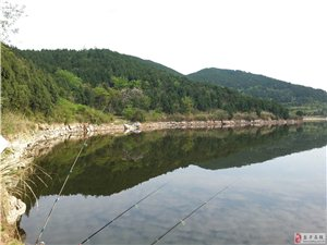 星期天和朋友一起到莲花湖钓鱼战况和群友们分享