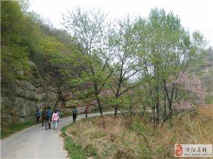 413博山西��古村游