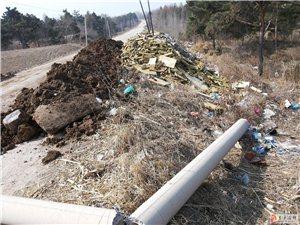 垃圾堆·臭气熏天·无人管·地点蚂蚁乡政府道口去永宁村的路旁