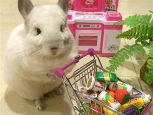 周末了,开心滴shopping去