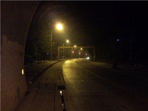 关于G209绕城线健身坡隧道路段交通管制的公告