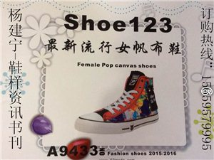 2015-2016新款鞋样品书刊