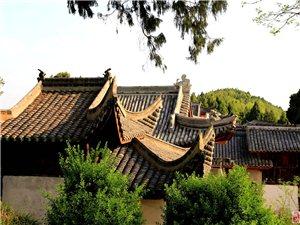 看看醴峰观3000年的古柏