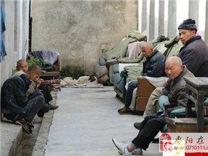 """""""爱――-在您身边""""福利院敬老爱老活动总结――枣阳义工协会"""