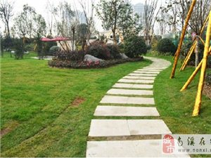 团购买房凯丽滨江看房团成员已定,花园小区里品茶、吃水果