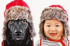 人狗双胞胎