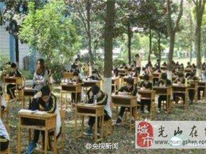 湖北一学校为防作弊将考场搬进树林