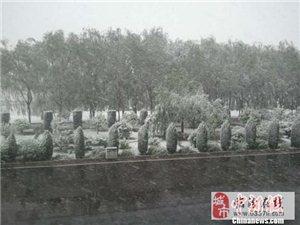 忻、朔地区初夏飞雪,让人无所适从(图)